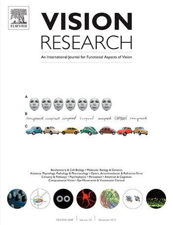 Shai Sabbah Laboratory | Brain research | Vision Research