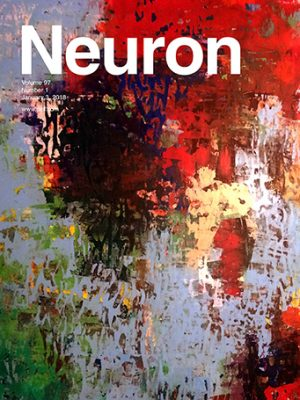 Shai Sabbah Laboratory | Brain research | Neuron Magazin